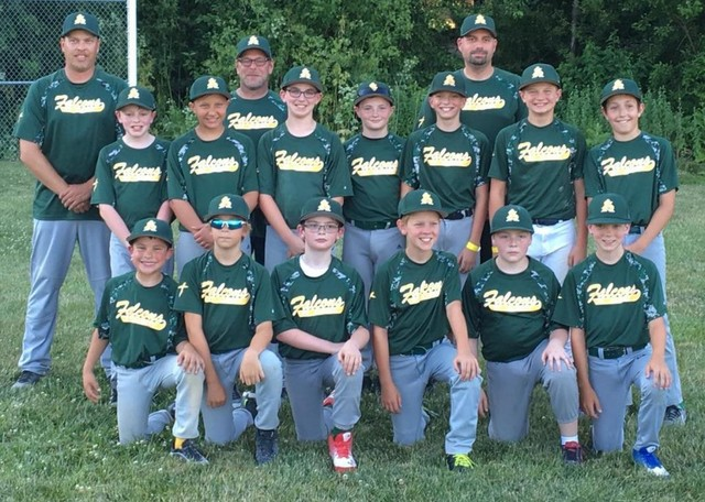 2017 4th & 5th grade Falcon Baseball team: Back Row left to right: Coach Troy Christensen, Coach Brian Siegert, Coach Justin PeknyMiddle Row left to right: Hayden Christensen, MJ Erickson, Brandon McCall, Tony Busch, Cole Pekny, Jaxson Lehnen, Luke WettengaleFront Row left to right: Cole Hobbs, Max Goltl, Theo Oswald, Atticus Walker, Jesse Siegert, Jack GoltlNot pictured: Joe Hughes